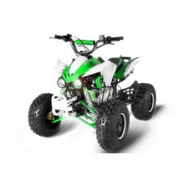 "Panthera 125cc 8"" 8"